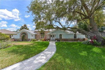419 Silas Court, Spring Hill, FL 34609 - MLS#: W7813299