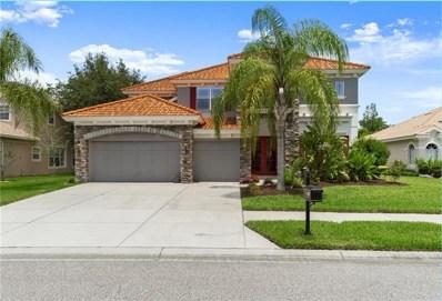 11317 Biddeford Place, New Port Richey, FL 34654 - #: W7813369