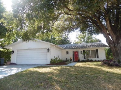 10819 Hachita Drive, Port Richey, FL 34668 - #: W7816754