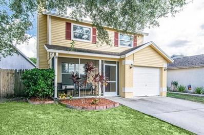 11665 Hidden Hollow Circle, Tampa, FL 33635 - #: W7816762