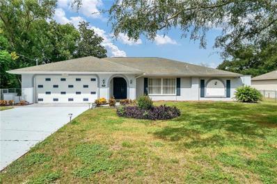 1059 Shenandoah Lane, Spring Hill, FL 34606 - #: W7817076