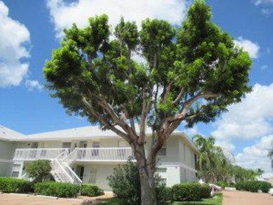 641 W Elkcam Circle UNIT 714, Marco Island, FL 34145 - #: 2182251