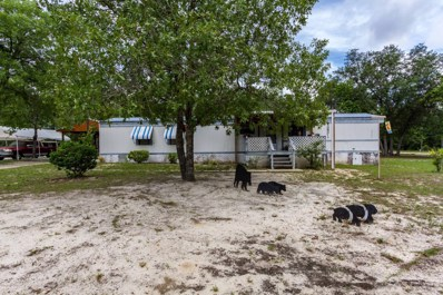 7182 Rosemont St, Keystone Heights, FL 32656 - #: 1000584