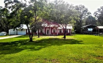 7676 Yellow Pine Cir S, Glen St. Mary, FL 32040 - #: 1001732