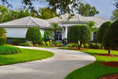 12 Sentry Oak Pl, Palm Coast, FL 32137 - #: 1005012