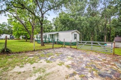 Middleburg, FL home for sale located at 64 Plankton Ave, Middleburg, FL 32068