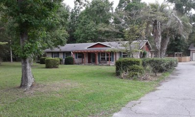 4081 Saddlehorn Trl, Middleburg, FL 32068 - #: 1006268
