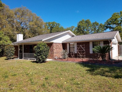 Middleburg, FL home for sale located at 2872 Tansy Ave, Middleburg, FL 32068