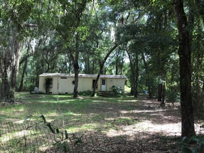 712 Neilsen Ave, Interlachen, FL 32148 - #: 1015727