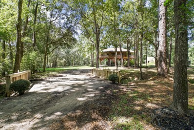 Middleburg, FL home for sale located at 2060 Falcon Run Ln S, Middleburg, FL 32068