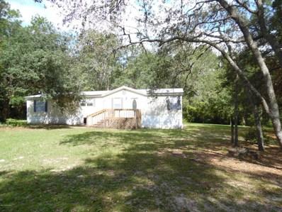 4811 Sedge St, Middleburg, FL 32068 - #: 1018378
