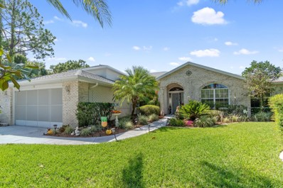 Palm Coast, FL home for sale located at 117 Colechester Ln, Palm Coast, FL 32137