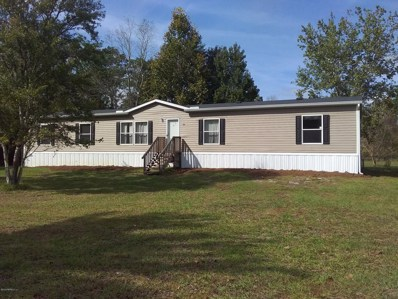 5412 Chicory St, Middleburg, FL 32068 - #: 1025051