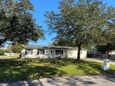 Orange Park, FL home for sale located at 2800 Mesquite Ave, Orange Park, FL 32065
