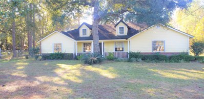 6232 Quiet Country Ln, Jacksonville, FL 32218 - #: 1026980