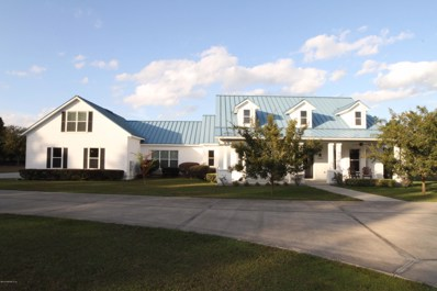 Jacksonville, FL home for sale located at 14689 Diamond Ranch Dr, Jacksonville, FL 32234