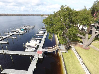 Welaka, FL home for sale located at 99 Broad River Pl UNIT 4303, Welaka, FL 32193