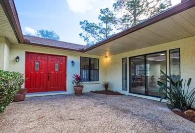 Middleburg, FL home for sale located at 1729 Long Horn Rd, Middleburg, FL 32068