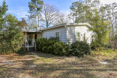 1013 Sweetwater Ln, Middleburg, FL 32068 - #: 1033877