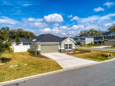 333 Carnation St, St Johns, FL 32259 - #: 1037115
