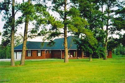 Hilliard, FL home for sale located at 371154 Kings Ferry Rd, Hilliard, FL 32046