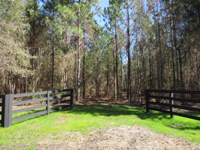 Hilliard, FL home for sale located at  20 Acres Old Dixie Hwy, Hilliard, FL 32046