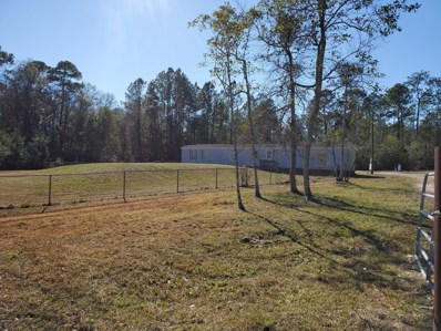 Middleburg, FL home for sale located at 69 N Mimosa Ave, Middleburg, FL 32068