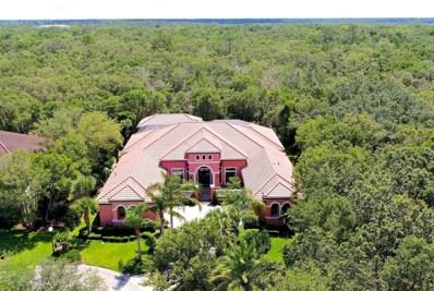 6 Spanish Oaks Ct, Palm Coast, FL 32137 - #: 1040155