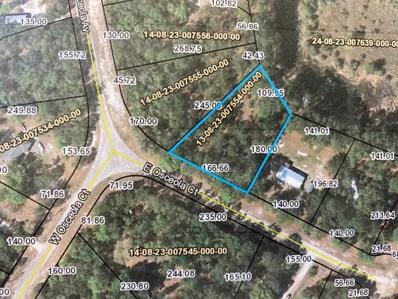 Keystone Heights, FL home for sale located at 7589 E Osceola Ct, Keystone Heights, FL 32656