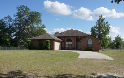Middleburg, FL home for sale located at 5601 Drake Loop Rd, Middleburg, FL 32068