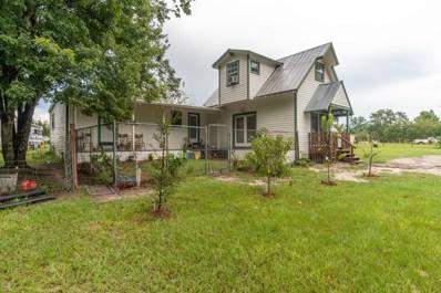 2032 Gentlebreeze Rd, Middleburg, FL 32068 - #: 1055602