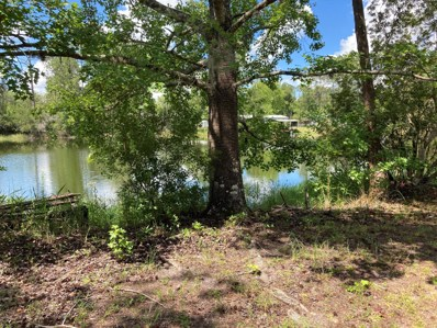 133 Riley Dr, Interlachen, FL 32148 - #: 1059351