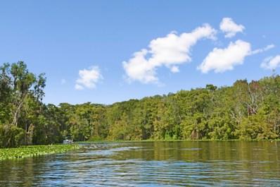 99 Broad River Pl UNIT 1204, Welaka, FL 32193 - #: 1078139