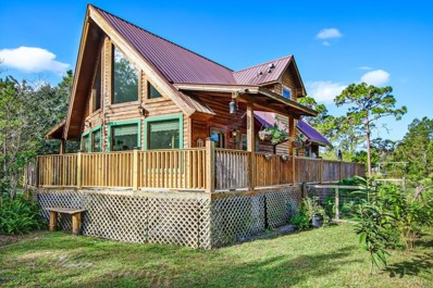 152 Pioneer Trl, Green Cove Springs, FL 32043 - #: 1079034