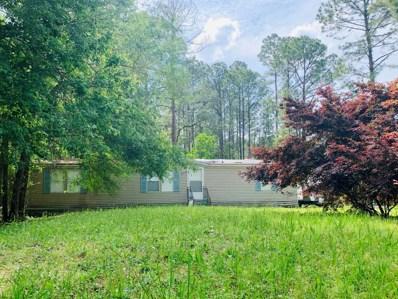2166 Pine Tree Ln, Middleburg, FL 32068 - #: 1104932