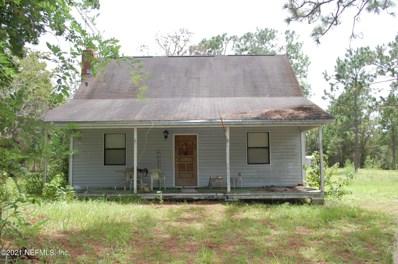 295 Redwater Lake Rd, Hawthorne, FL 32640 - #: 1119784