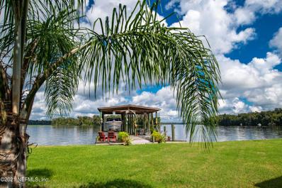 103 Tall Palms Ln, Welaka, FL 32193 - #: 1132135