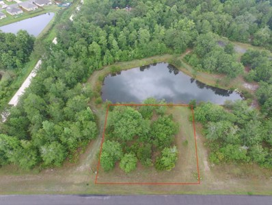 3659 Kimberly Creek Ln, Green Cove Springs, FL 32043 - #: 885464