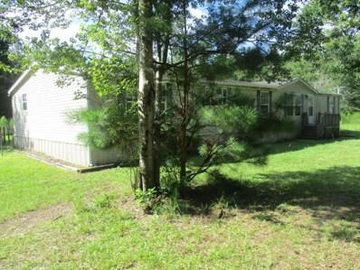 1657 Long Horn Rd, Middleburg, FL 32068 - #: 894646