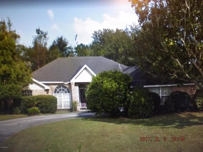 2320 Locustwood Ct, Orange Park, FL 32065 - #: 895089
