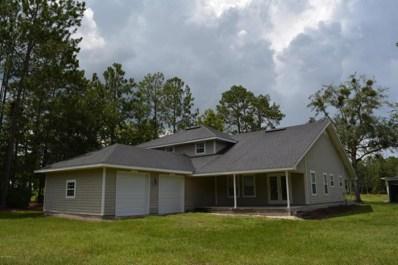 285 Horsetail Ave, Middleburg, FL 32068 - #: 895226