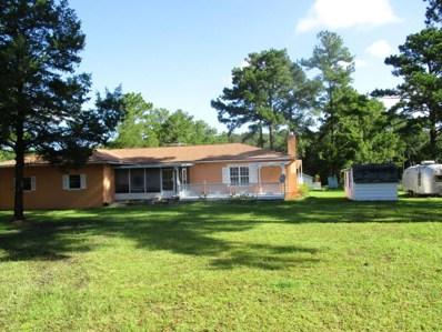 48626 Crawford Ln, Hilliard, FL 32046 - #: 896136