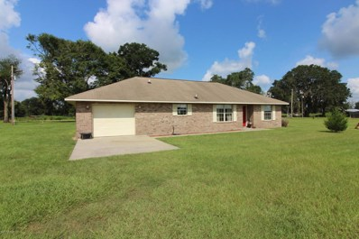 15723 SW 151 Ter, Brooker, FL 32622 - #: 896881