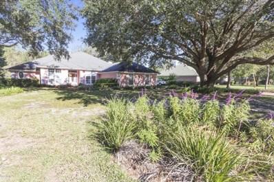 1498 Mallard Landing Blvd, Jacksonville, FL 32259 - #: 897719