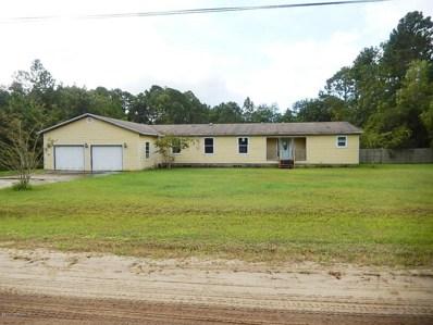 39 Mandrake St, Middleburg, FL 32068 - #: 900566
