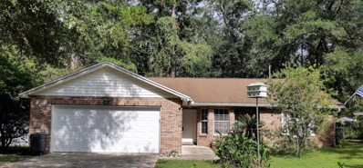 3411 Wilderness Cir, Middleburg, FL 32068 - #: 903319