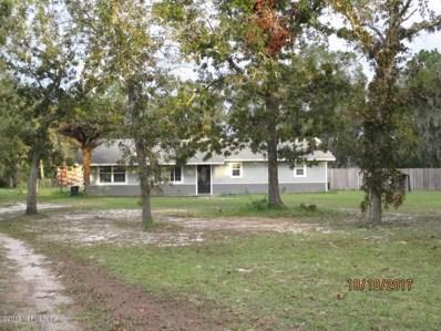 53 Horsetail Ave, Middleburg, FL 32068 - #: 905652