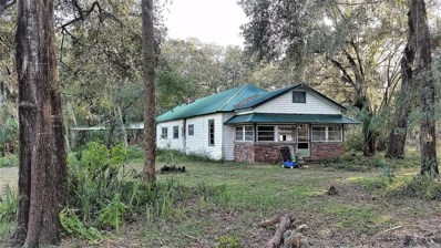 141 E Strickland Rd, Interlachen, FL 32148 - #: 906315
