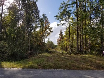 County Road 209 S, Green Cove Springs, FL 32043 - #: 906500