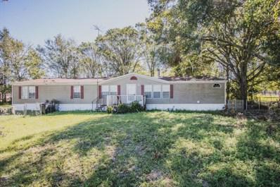 2259 Mallard Rd, Middleburg, FL 32068 - #: 907062
